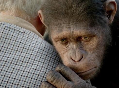 Sự nổi dậy của loài khỉ và những trải nghiệm mới - Hình 2