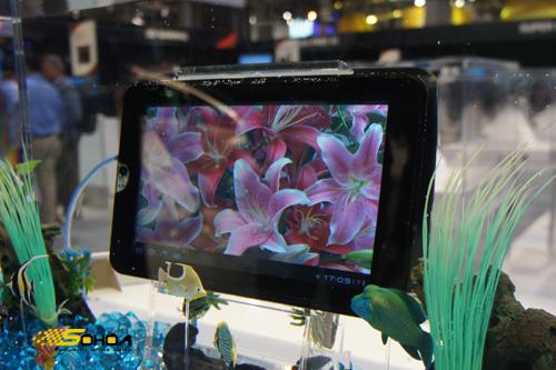 Bộ tablet PC chưa từng bán của Toshiba - Hình 1