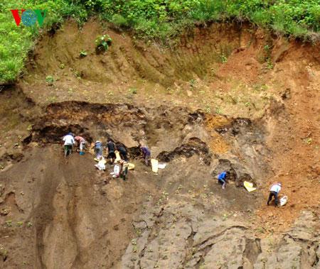 Lai Châu: Quản lý vô trách nhiệm, đất hiếm mất từng ngày - Hình 1