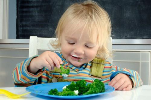 Trẻ cần được ăn đa dạng - Hình 1