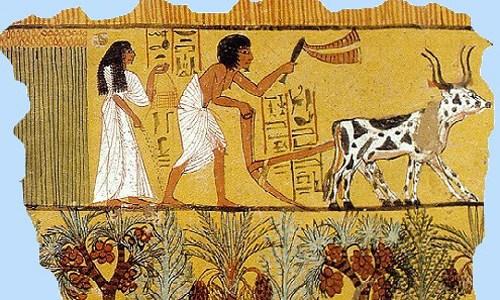 Bói tên kiểu Ai Cập số 8 - Xem bói tướng