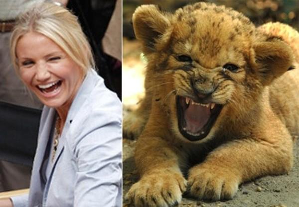 Những khoảnh khắc giống... động vật của các sao Hollywood