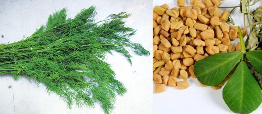 5 loại thảo dược mang đến cho bạn khuôn ngực mịn màng tròn trịa - Hình 5