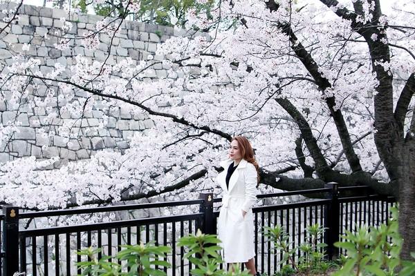 Mỹ Tâm đẹp mơ màng lạc bước vào rừng hoa anh đào - Hình 2