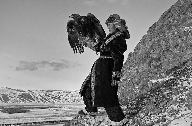 Cuộc sống của thợ huấn luyện đại bàng săn mồi ở Mông Cổ - Hình 1