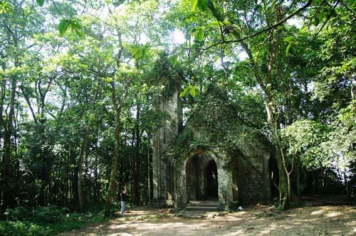 Những Vườn Quốc Gia Nổi Tiếng Đẹp Của Việt Nam - Hình 1
