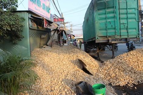 Lật xe container, hàng chục tấn khoai mì đổ tràn lấp cửa nhà dân - Hình 2