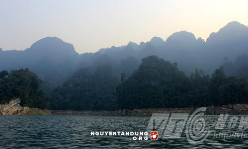 Phát hiện chấn động ở Tuyên Quang: Đàn hổ hoang dã sống cạnh dân - Hình 1