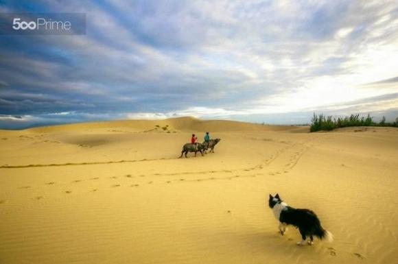 Tìm về những đồi cát đẹp nhất miền Trung - Hình 1