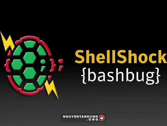 89 website Việt bị hacker tấn công qua lỗ hổng Shellshock - Hình 1