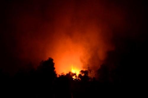 Rộ tình trạng đốt cỏ gây cháy lớn - Hình 1