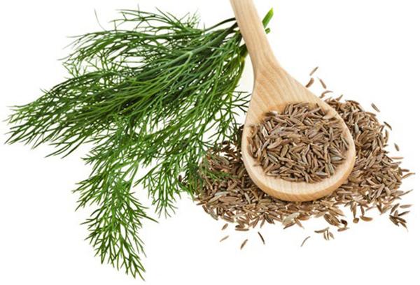 7 loại thảo dược giảm cân có sẵn trong nhà bếp - Hình 6