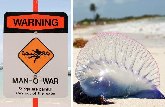 10 điều bạn nhất định phải biết để sống sót an toàn khi đến những nơi xa lạ