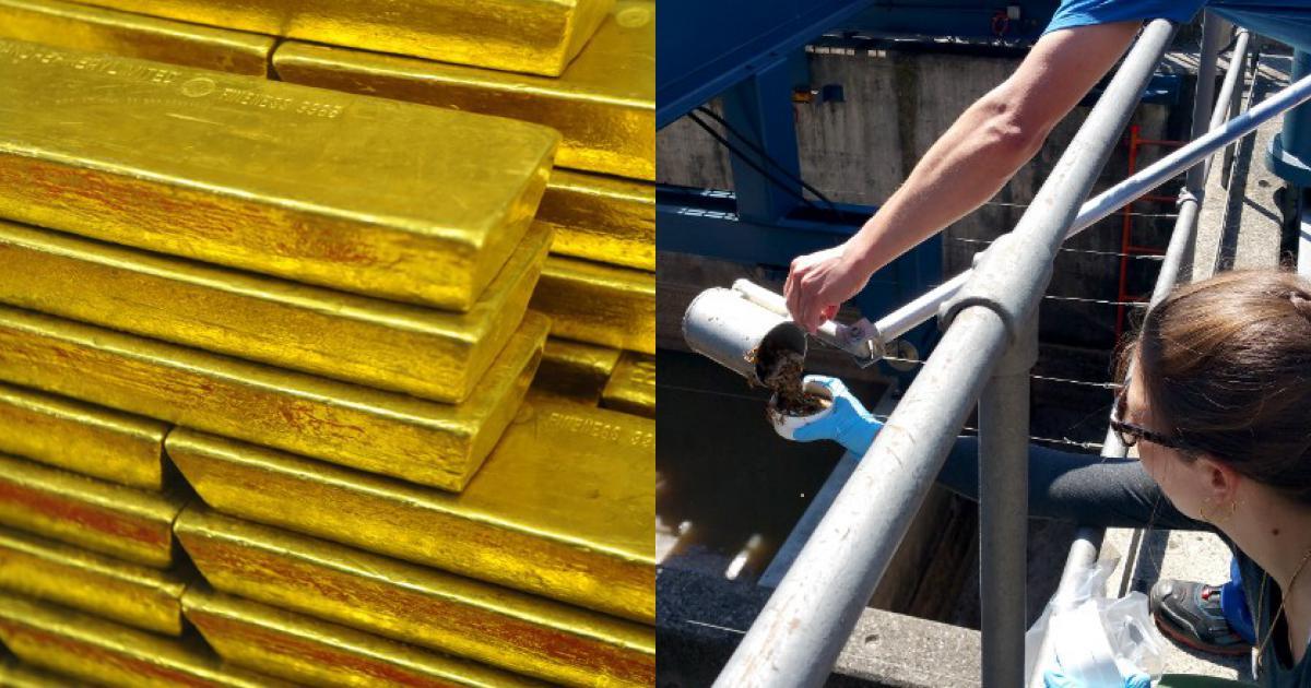 """Thụy Sĩ: Phát hiện """"mỏ"""" vàng 45 tỷ đồng ở nơi bẩn thỉu không ngờ"""