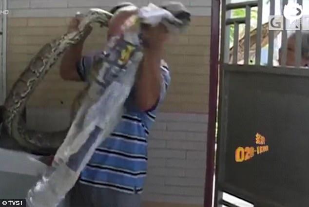 Mang đồ đi giặt, người phụ nữ giật bắn mình khi phát hiện thứ cựa quậy trong máy giặt