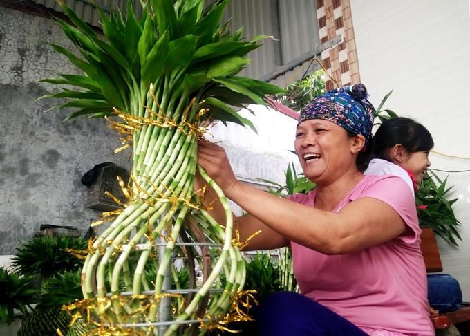 Bỏ lúa, trồng cây phất lộc, nông dân phất lên thu hàng trăm triệu