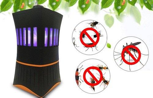 4 cách đuổi muỗi trong phòng ngủ cực kỳ hiệu quả mà lại dễ làm