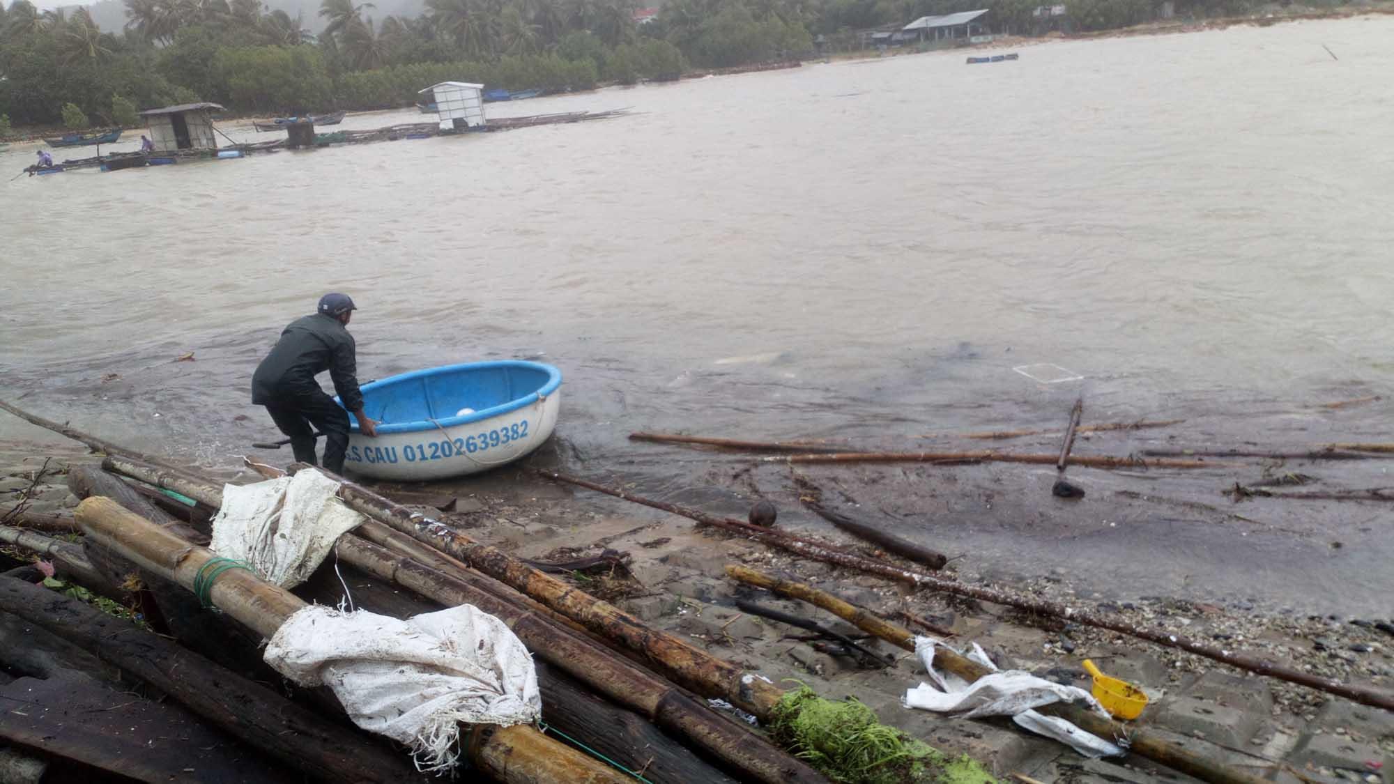 Phú Yên: Hàng ngàn lồng nuôi tôm hùm tiền tỷ bị bão số 12 thổi bay - Hình 1