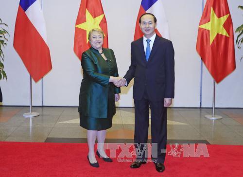 Chủ tịch nước chủ trì Quốc yến chào mừng Tổng thống Chile - Hình 2