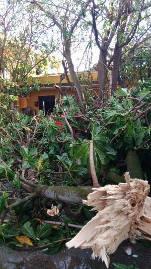 Những hình ảnh đầu tiên ở Trường Sa khi cơn bão Tembin quét qua