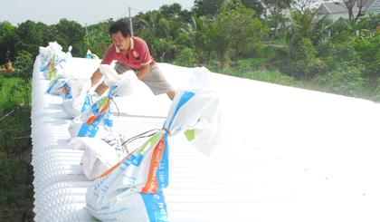 Tiền Giang hối hả sơ tán dân tránh bão Tembin - Hình 3