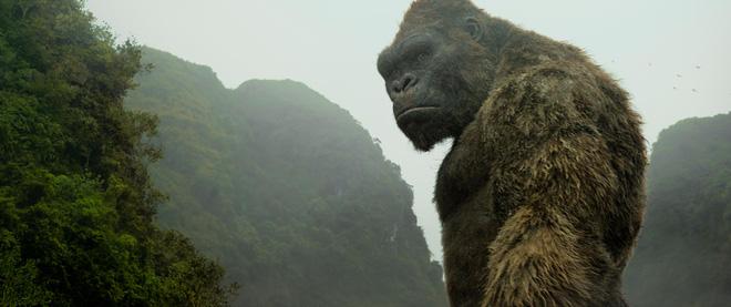 Kong: Skull island và một sự thật đau điếng người