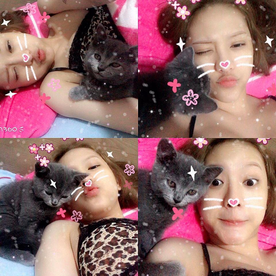 Hot girl 19 tuổi chụp ảnh với mèo đốt mắt quý ông là ai?