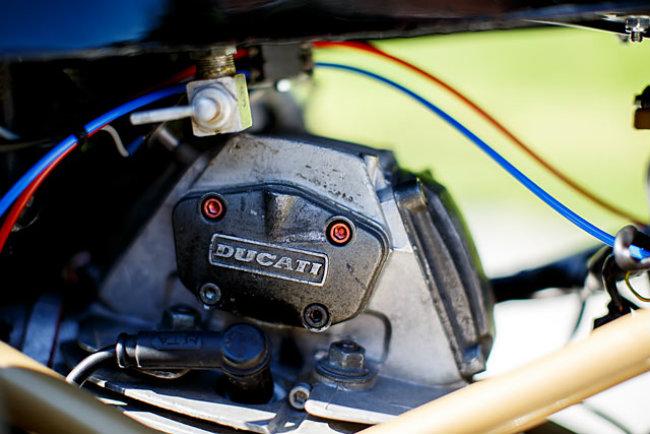 Chết mê Ducati Monster bản độ Mèo săn chuột - Hình 7
