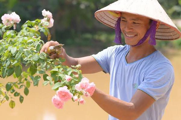 Chàng trai 8X lập nghiệp từ hoa hồng trên đất Tổ - Hình 1