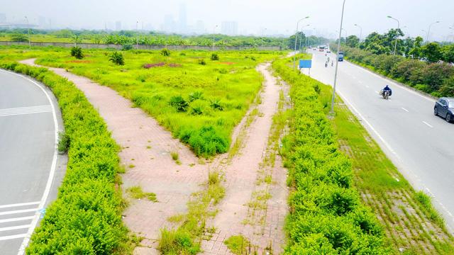 Cỏ dại um tùm suốt 24km Đại lộ Thăng Long - Hình 8
