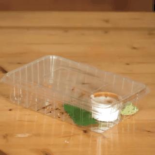 Hoá ra những chiếc hộp đồ ăn mà chúng ta bỏ đi mỗi ngày thế này lại có tác dụng cực hữu ích