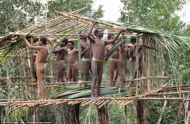 Ảnh hiếm về bộ lạc sống vắt vẻo trên nhà cây cao 9m
