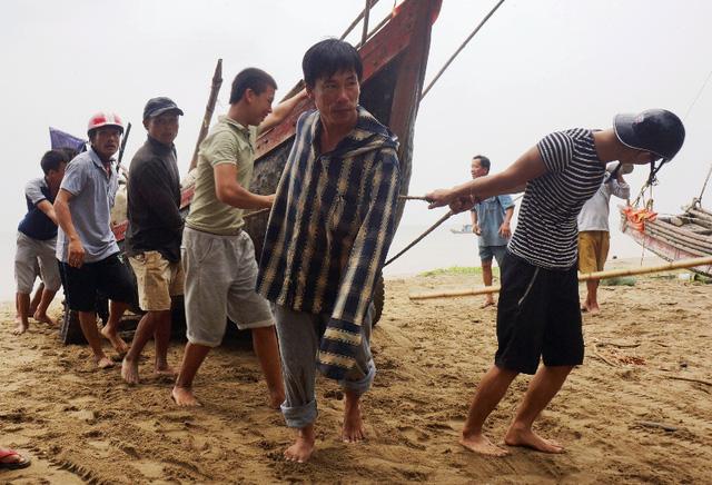 Công an giúp dân gặt lúa chạy bão - Hình 7