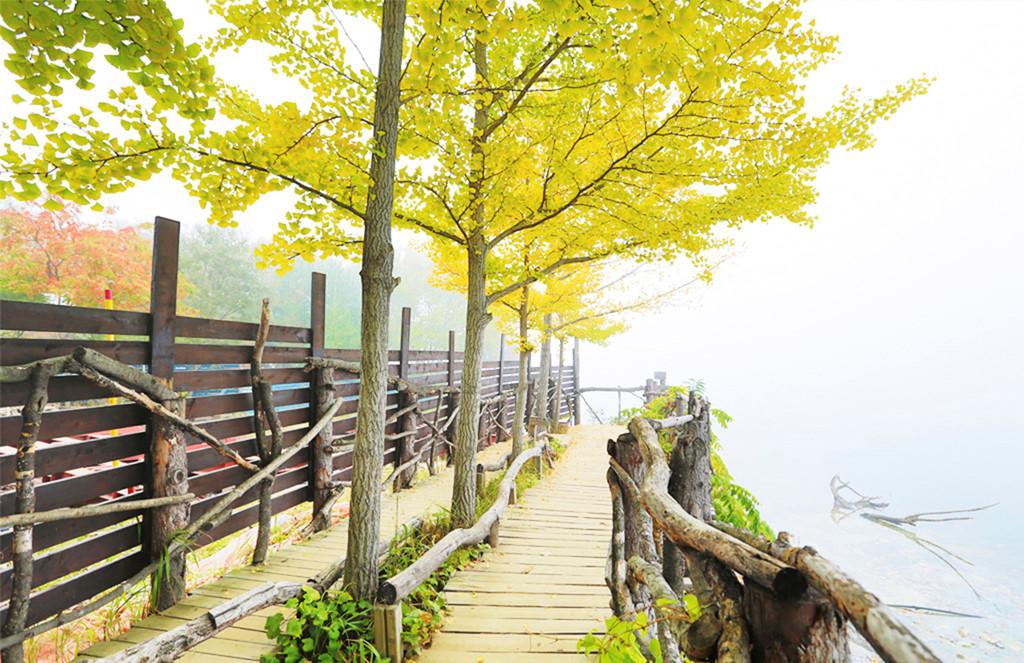 Mùa thu tại hòn đảo trong phim Bản tình ca mùa đông