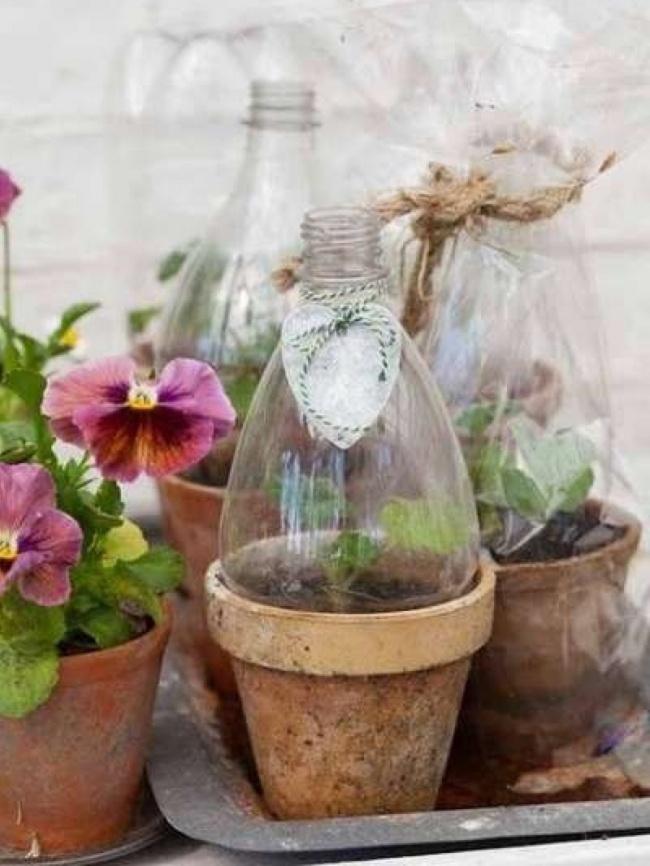17 cách tái chế chai nhựa cực đỉnh khiến hàng xóm tròn mắt