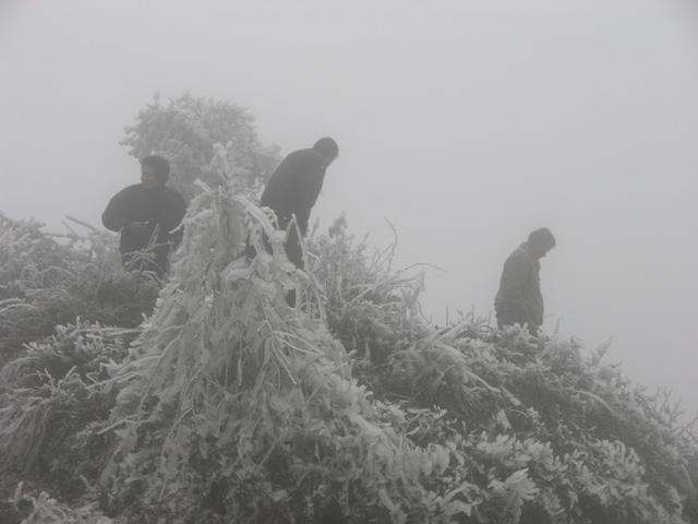 Hình ảnh băng tuyết kỳ thú trên đèo Ô Quý Hồ
