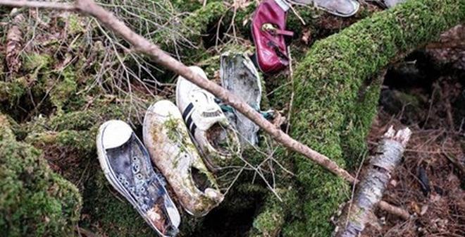 Khu rừng tự sát: Địa điểm ám ảnh nhất Nhật Bản