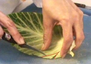 Cách tỉa lá bắp cải đẹp mà không khó - Hình 8