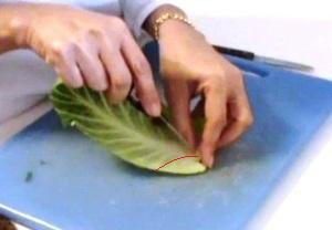 Cách tỉa lá bắp cải đẹp mà không khó - Hình 6