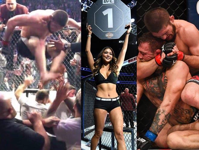 Khabib hạ McGregor loạn đả UFC: Mỹ nhân vạ lây kinh hồn bạt vía - Hình 1
