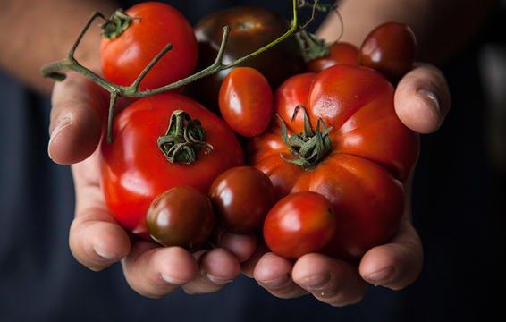 Tốp 10 thực phẩm tốt nhất cho da trong mùa đông - Hình 2