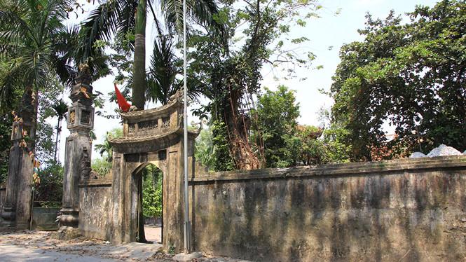 Cận cảnh cây sưa trăm tỉ ở chùa Vĩnh Phúc, Hà Nội - Hình 8