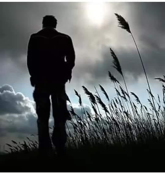 Vợ ngoại tình - Nỗi đau không hồi kết chỉ vì lời đàm tiếu - Hình 2