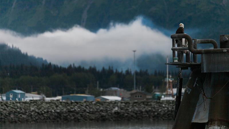 Khám phá 10 thị trấn xinh đẹp ở tiểu bang Alaska - Hình 5