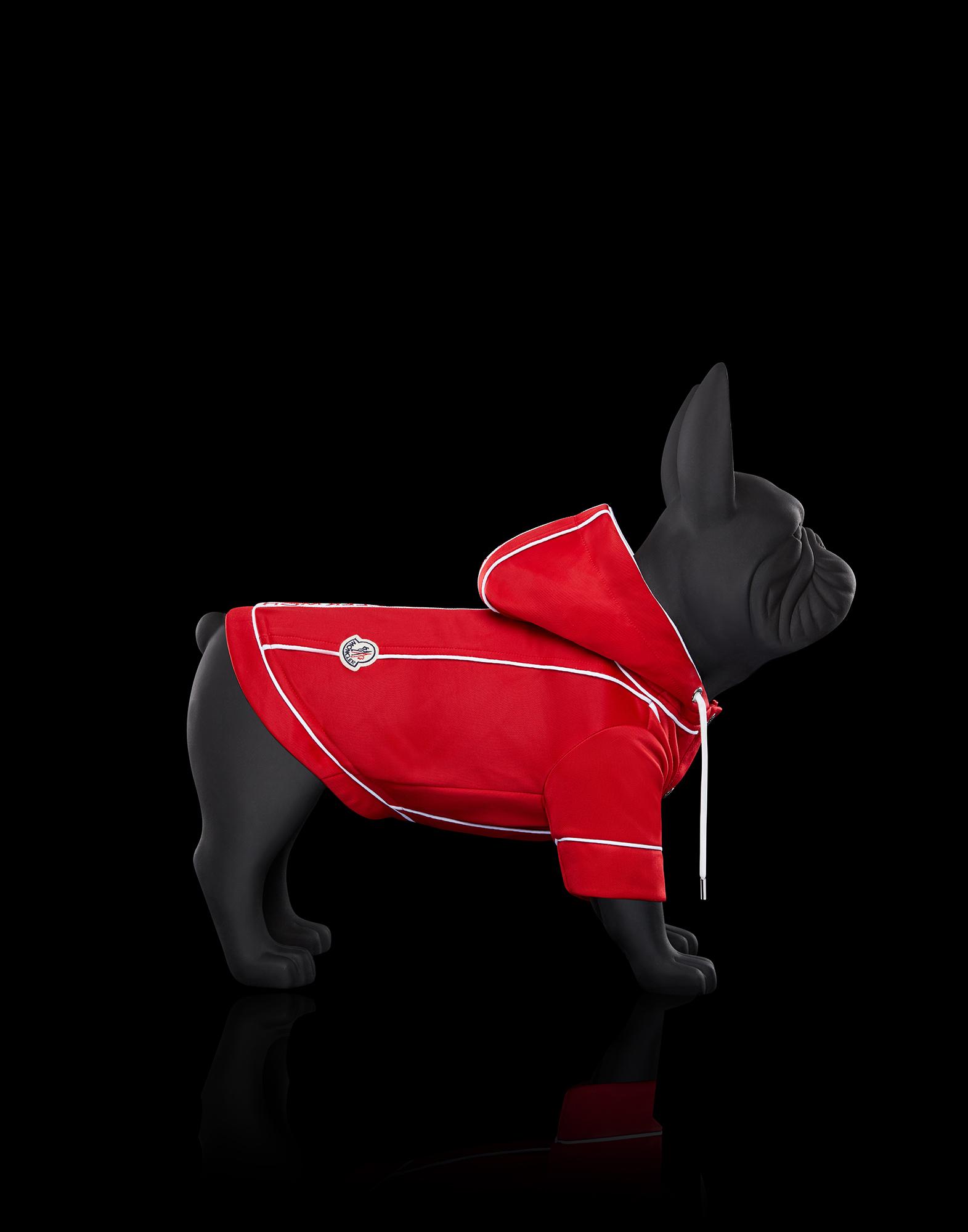 Thương hiệu Moncler tung BST áo khoác cao cấp cho... cún cưng - Hình 2