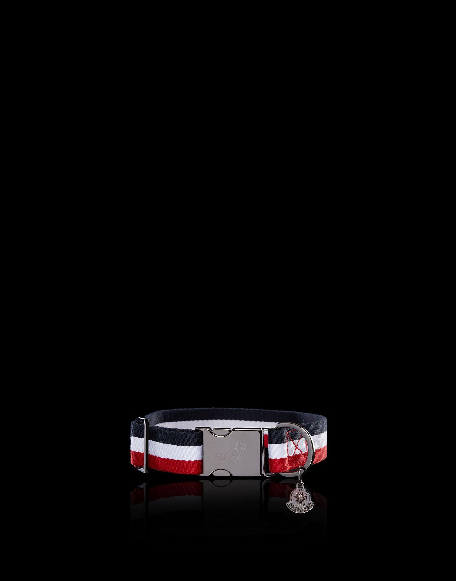Thương hiệu Moncler tung BST áo khoác cao cấp cho... cún cưng - Hình 5