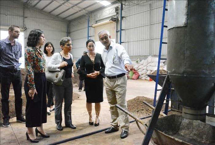 Hiệu quả từ công nghệ nhiệt phân trong sản xuất cà phê - Hình 1