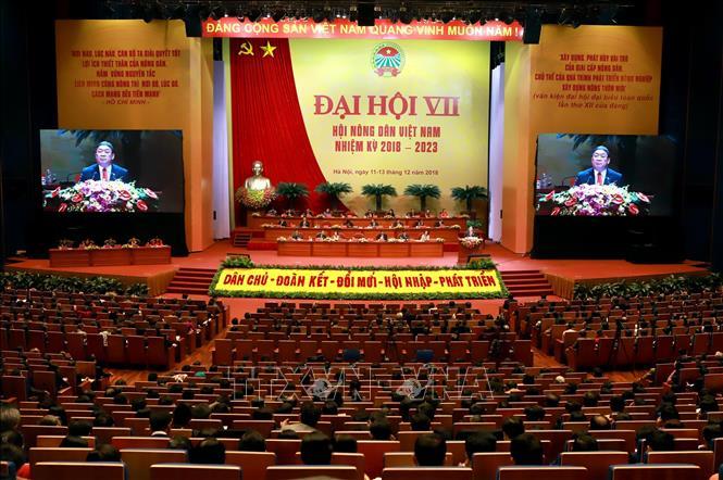 Đổi mới tư duy, tạo những giá trị mới cho nông nghiệp, nông thôn và nông dân Việt Nam - Hình 1
