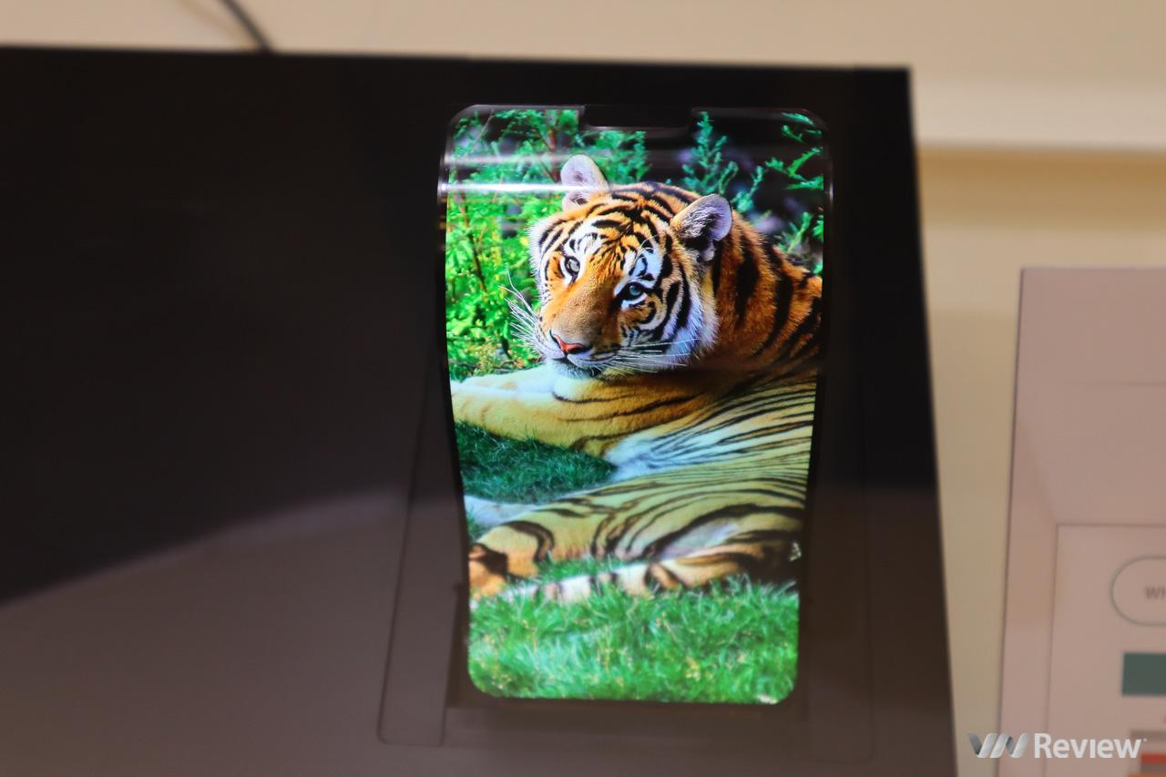 Sharp bất ngờ trình diễn màn hình OLED dẻo uốn cong, TV 8K nhân kỷ niệm 10 năm có mặt tại VN - Hình 6