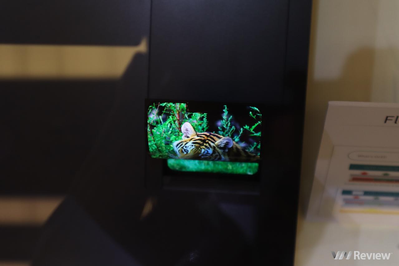 Sharp bất ngờ trình diễn màn hình OLED dẻo uốn cong, TV 8K nhân kỷ niệm 10 năm có mặt tại VN - Hình 7